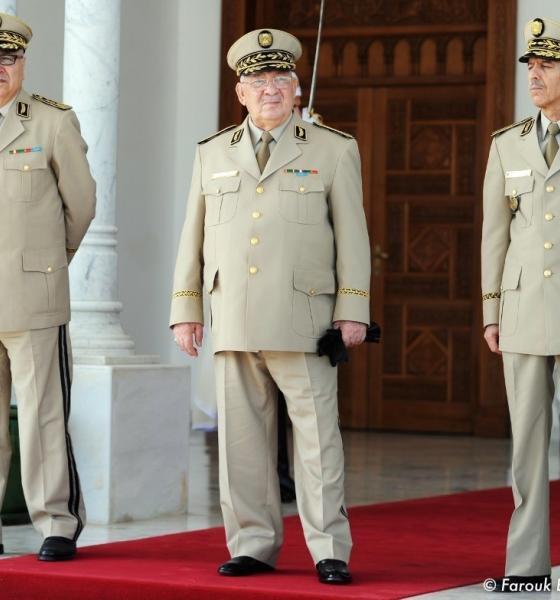 , Enquêtes anticorruption : l'Algérie à l'heure du grand ménage